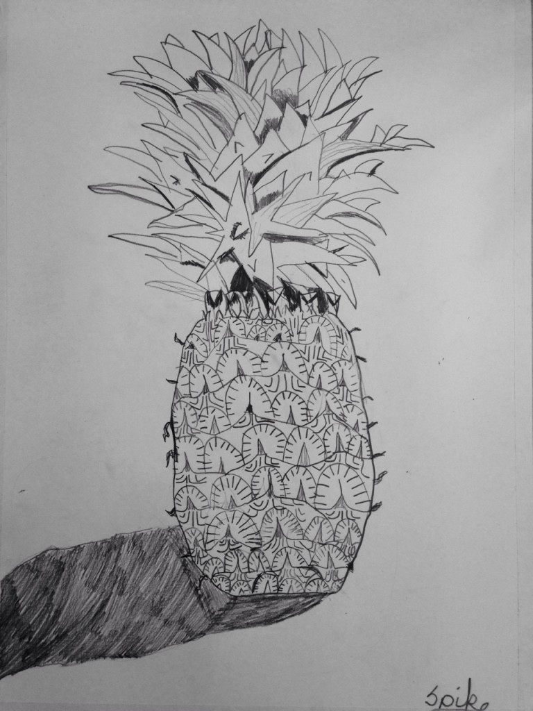 PENCIL_PINEAPPLE_01