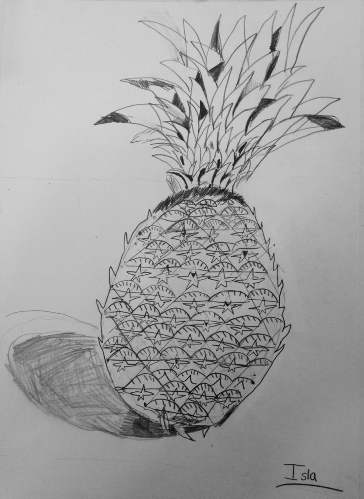 PENCIL_PINEAPPLE_07